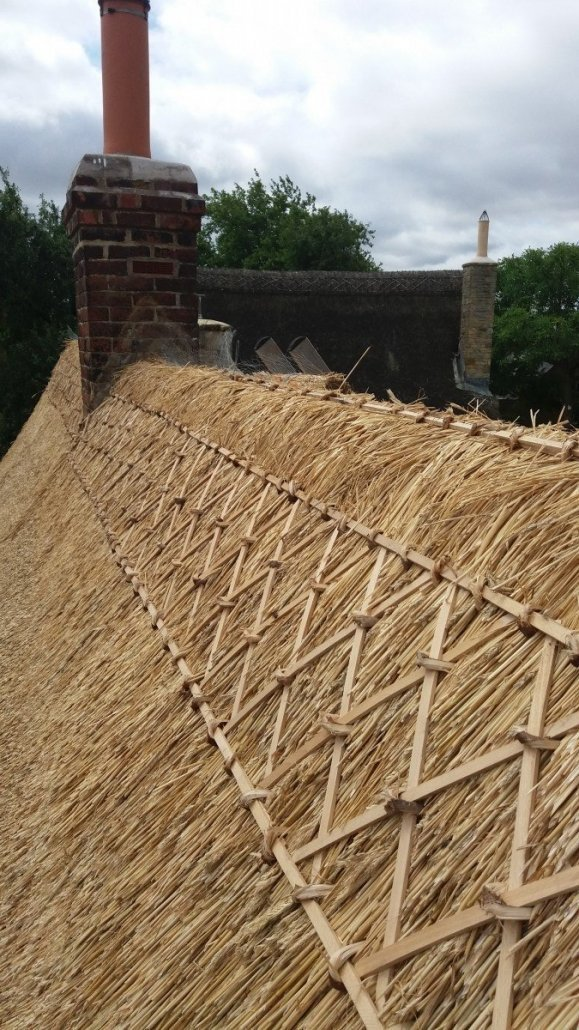 All About Thatch Olde England Roofs Master Thatchers
